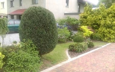 Ogródek Agnieszki i Kasi