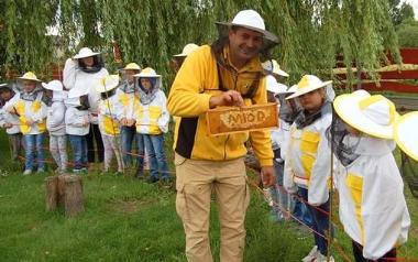Zagroda edukacyjna Pszczeli Świat - Pasieka w Lipce Dariusz Serafiński