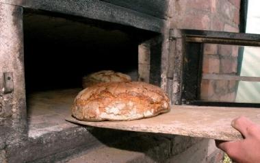 Chleb z Korbolem ( z dynią) w Piekarni Wiejskiej w Zębowie