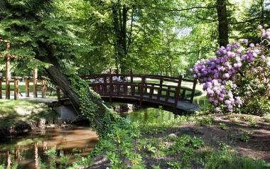 Park Dworski w Iłowej