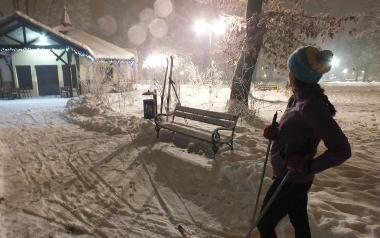 Trasa narciarstwa biegowego w parku zdrojowym - Rabka-Zdrój