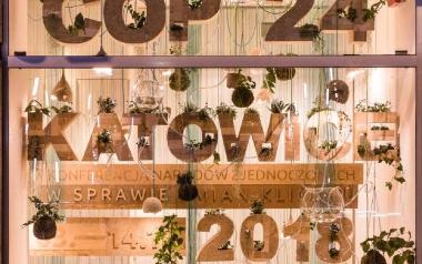 Eco-instalacje w witrynie i przy wejściu do Urzędu Miasta Katowice