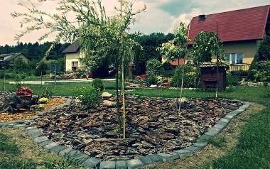 Ogród Elżbiety Borowskiej w Tursku Małym Kolonii, powiat staszowski