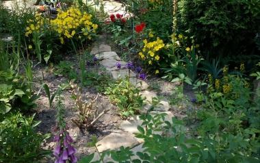 Ogród Elżbiety Kleczaj w Starachowicach