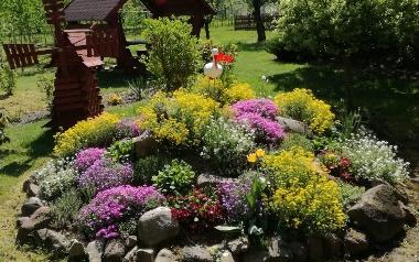 Ogród Iwony Zdańskiej w Rożnicy w powiecie jędrzejowskim