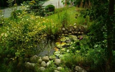 Ogród Konrada Wójcickiego z Siedlec, powiat kielecki