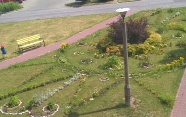 Ogród Ligii Pietrzyk w Kielcach