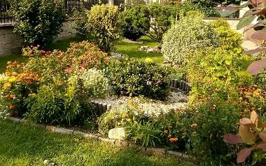 Ogród Lili Stępień w Zawichoście, powiat sandomierski