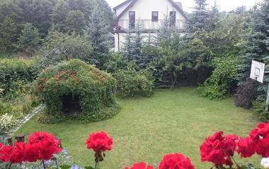 Ogród Marii Derry ze Starachowic