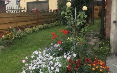 Ogród Roberta Skóry z Kielc