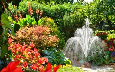 Ogród Ryszarda Gory z Ostrowca Świętokrzyskiego