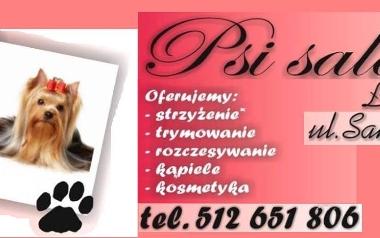 Psi salon, Łódź, Sanocka