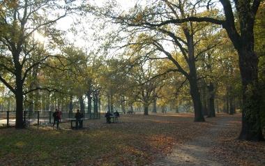 Park Biskupiński