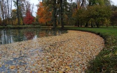 Park Brochowski