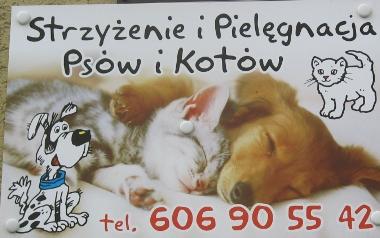 Salon Strzyżenia psów - Batalionów Chłopskich 12