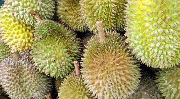 QUIZ: Owoc czy warzywo? Potrafisz dopasować te produkty?