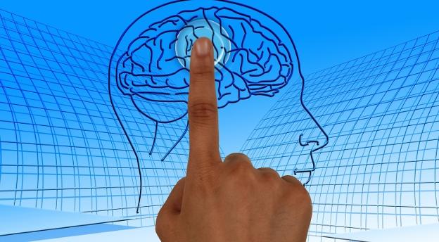 GŁÓWKA PRACUJE. Przetestuj swoją inteligencję! [15 pytań]