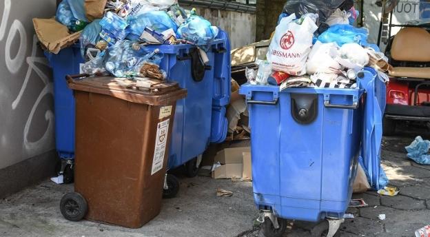 Prawidłowo segregujesz śmieci? Rozwiąż quiz i sprawdź!