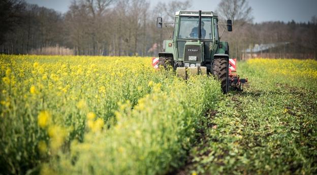 Czy nadajesz się na rolnika? Wiesz do czego są gable i żmijka?