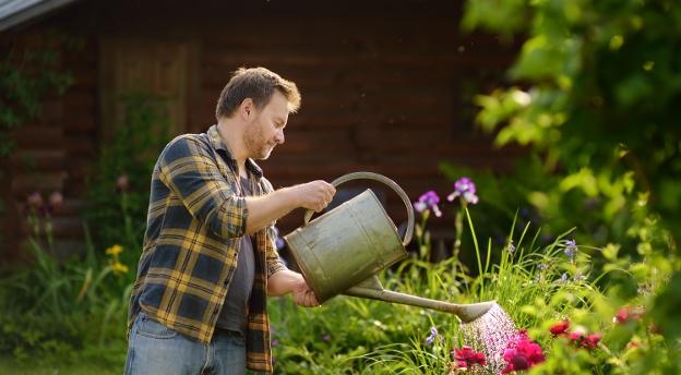Test wiedzy o ogrodnictwie. To musisz wiedzieć! QUIZ